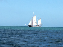 Moonfleet Sailing by Ann Westwood along