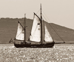 Moonfleet sailing the Jurassic Coast hom