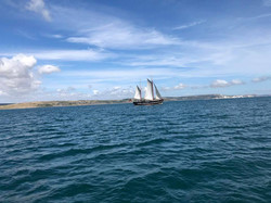 Moonfleet Sailing in Weymouth taken by J