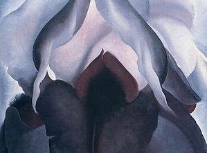 black-iris.jpg