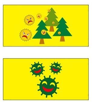 example6-min.jpg