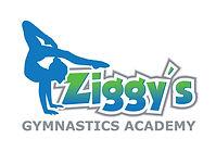 Ziggy's Logo_v2 (1).jpg