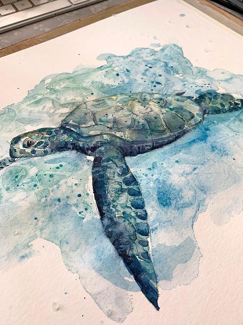 Turtle Watercolour Tutorial