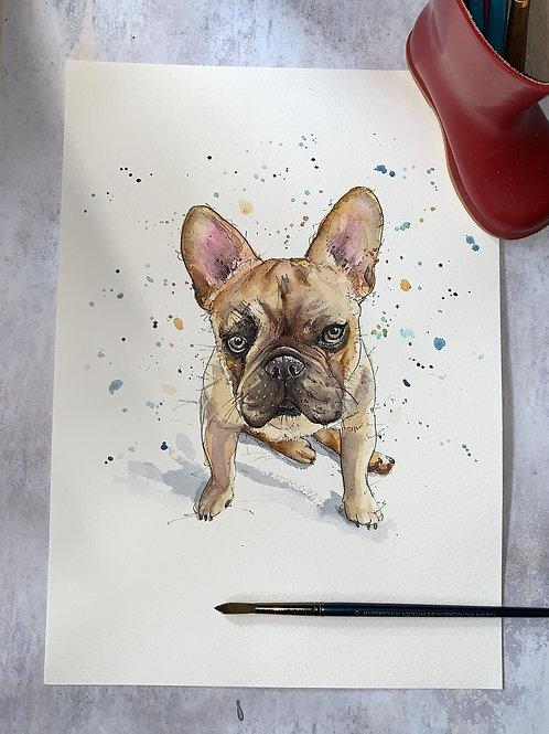 Original Watercolour -Frenchie