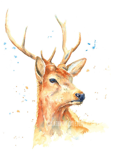 Stag - Watercolour Print from watercolour painting