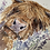 Thumbnail: Original Watercolour - Highland coo
