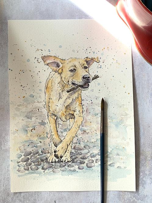 Original Watercolour - Labrador
