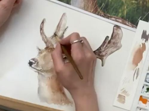 Stag Watercolour Tutorial