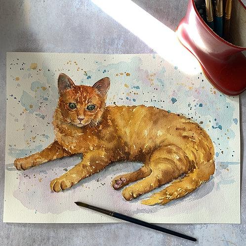 Original Watercolour - Ginger Tom