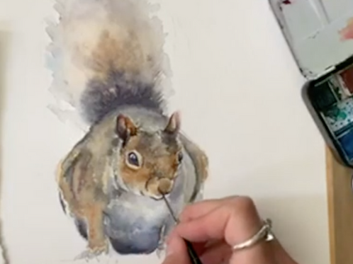 Squirrel Watercolour Tutorial