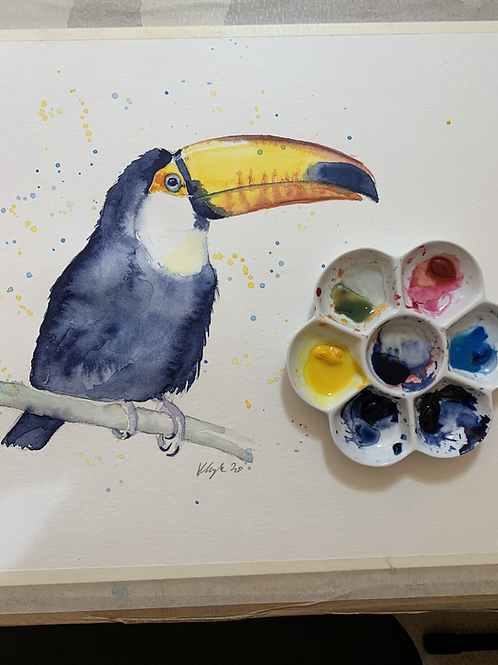 Toucan Watercolour Tutorial