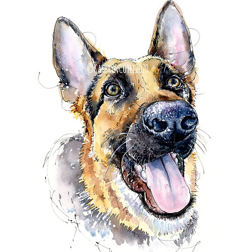 German Shepherd Alsatian Print