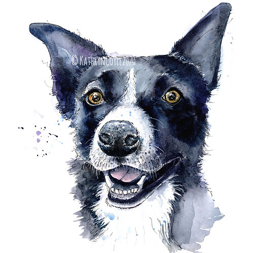 Collie Print Sheep Dog Watercolour