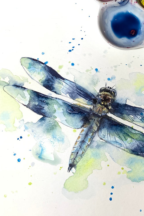 DragonFly Watercolour Tutorial