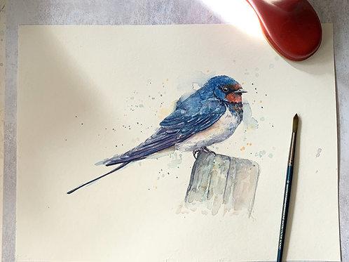 Original Watercolour - Swallow