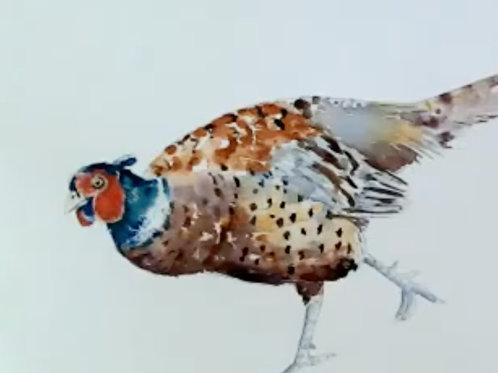 Pheasant Watercolour Tutorial