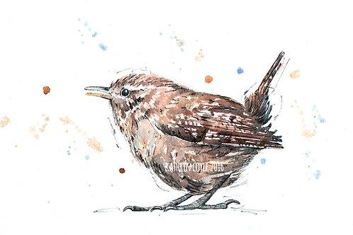 Watercolour Wren Print