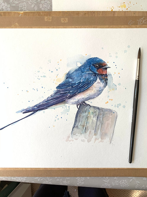 Swallow Watercolour Tutorial