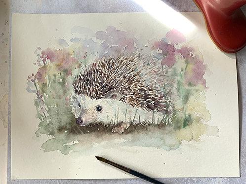 Original Watercolour - Hedgehog