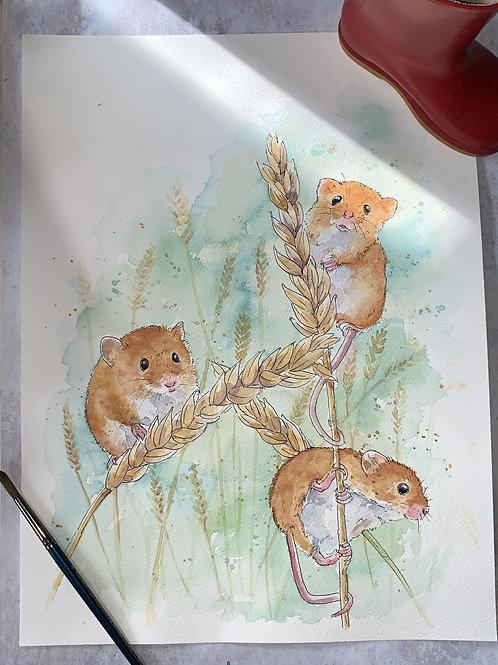 Original Watercolour - 3 harvest mice