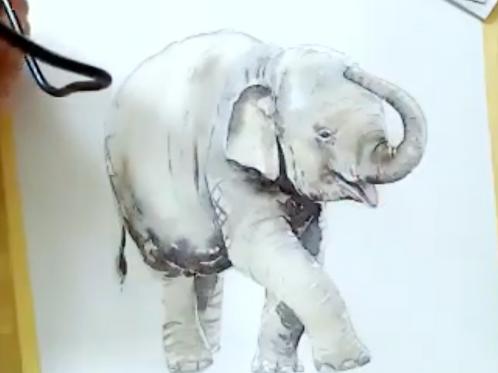 Elephant Watercolour Tutorial