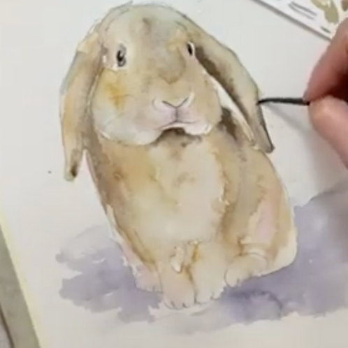 Easter Bunny Watercolour Tutorial
