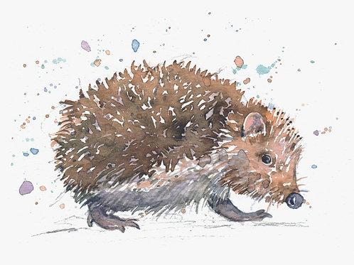 ACEO Mini Original Watercolour - Hedgehog