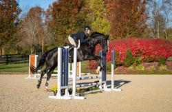 Horse Show Sports Ohio Hunter/Jumper