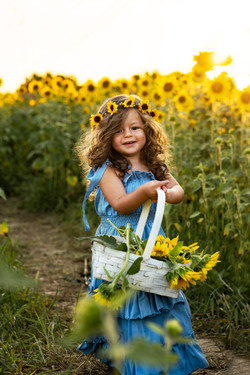 Summer Sunflower Field Child Photoshoot