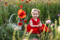 Baby Poppy Field Outdoor Shoot Dayton