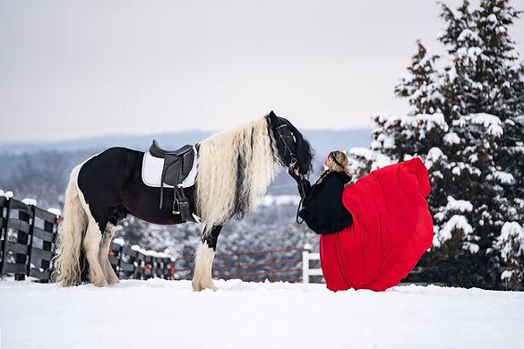Dreamy Winter Equine Photoshoot