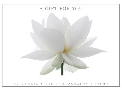 VSPF Gift Certificate
