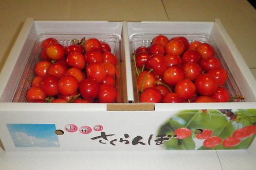 紅秀峰 500g×2パック バラ詰め( Lサイズ以上)税・送料込