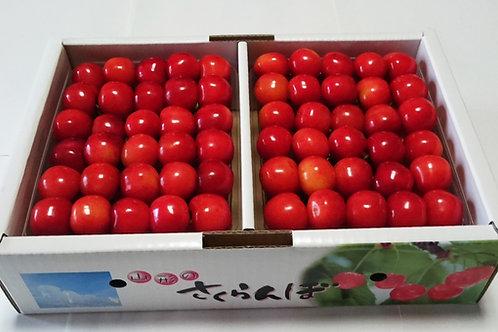 佐藤錦 500g×2パック手詰め( 2Lサイズ以上)税・送料込