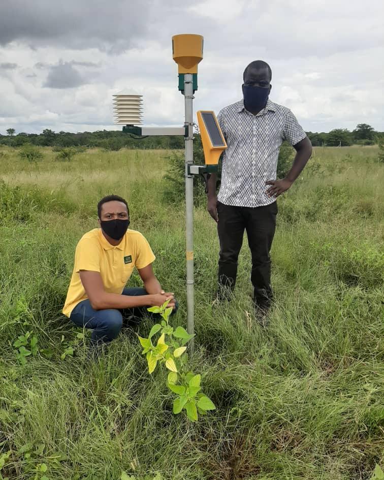 Zakis Project: Mhondoro Ngezi DACE (Turf)