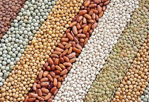 grain-6.jpg