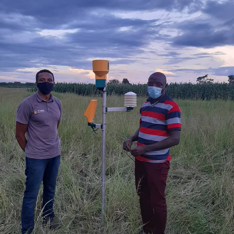 ZAKIS Project: Dzingainhamo DACE