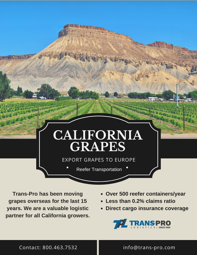 California Grapes Export Service to Europe