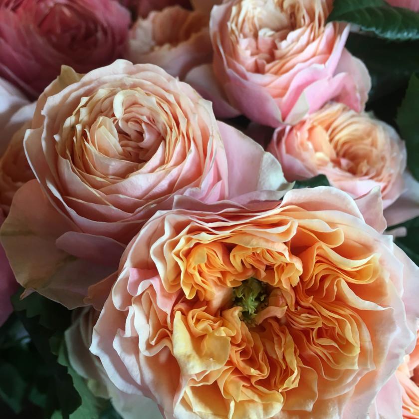 Emma Jane Floral Design garden roses in pink orange tones