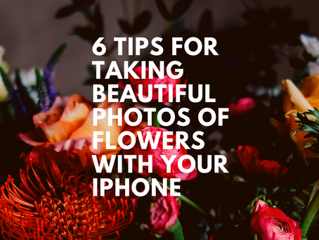 6 Tips For Taking Beautiful Photos Of Flowers On Your iPhone (2021)