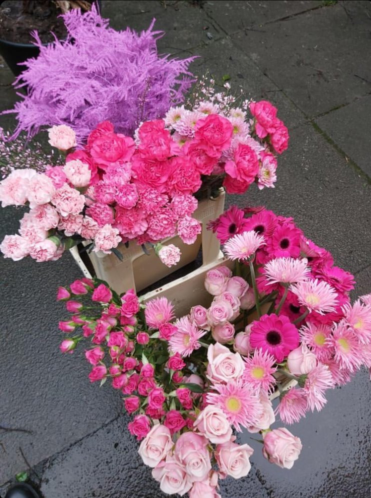 A selection of pink flowers and dyed asparagus fern used in a foam freee floral installation by emma jane floral design