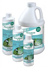 Algaway-collage-500x747.png