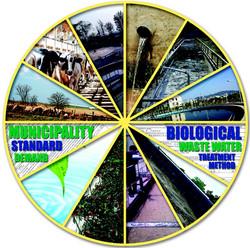 Municipality Standard