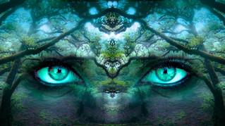 Expansão da Consciência: Passos práticos, precisos e preciosos