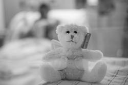 angel bear