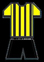 Daren Ansell kit (1).png