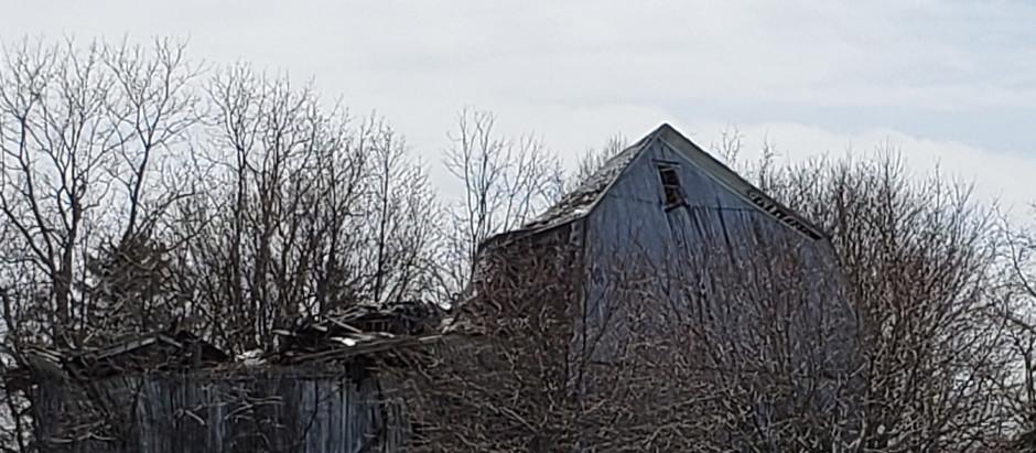 My Barns