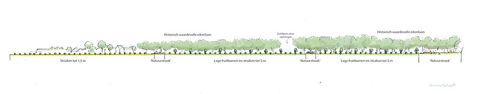 200529 Schevickhoven_aanzicht.jpg