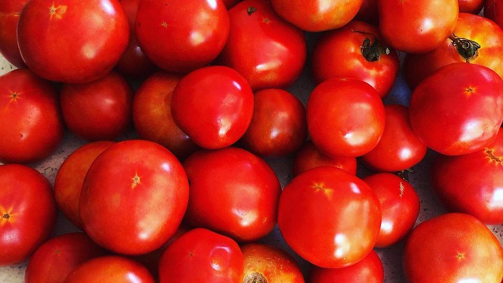 Ma Farm Organically Grown TOMATOES
