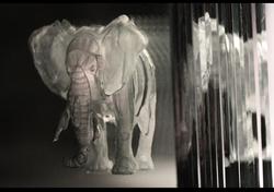 elephant ob